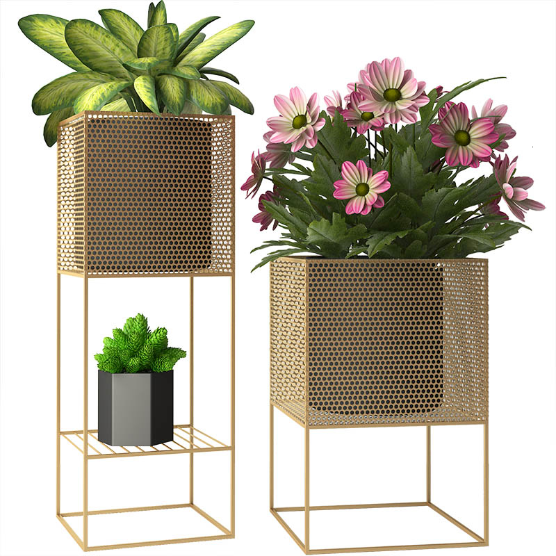 Northern Europe Designer Minimalism Indoor Living Room Ground Flower Rack Balcony Originality Green Plant Shelves