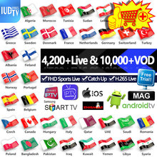 IPTV M3u Italia Spanish Greek Swedish IUDTV Pro 1 Year Europe Subscription Code for Android MAG25X France Germany