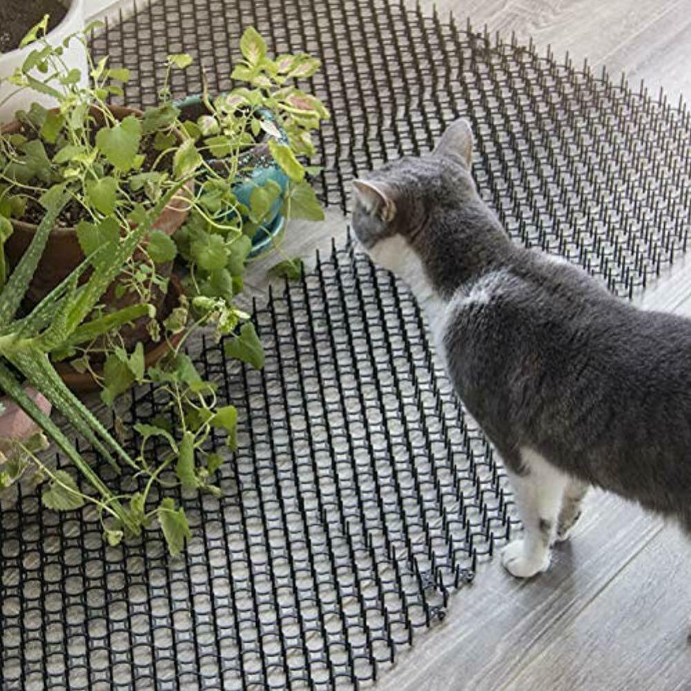 Tapis de jardin Portable Anti-chat chien | Bande de râpe de jardin, butée de fouille répulsif pour chat, fournitures de jardin de plein air de 13cm x 49cm de 10 pièces