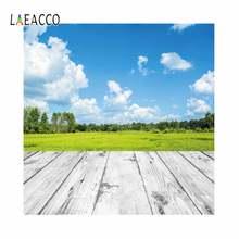 Laeacco весеннее небо поле деревянный пол Живописный фон для