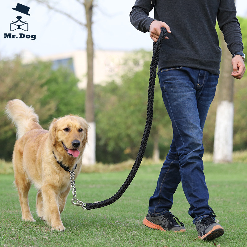 Dog Hand Holding Rope Small Medium Large Dog Shiba Inu Horse Dog Golden Retriever Puppy Training For P Pendant Big Dog Pendant S