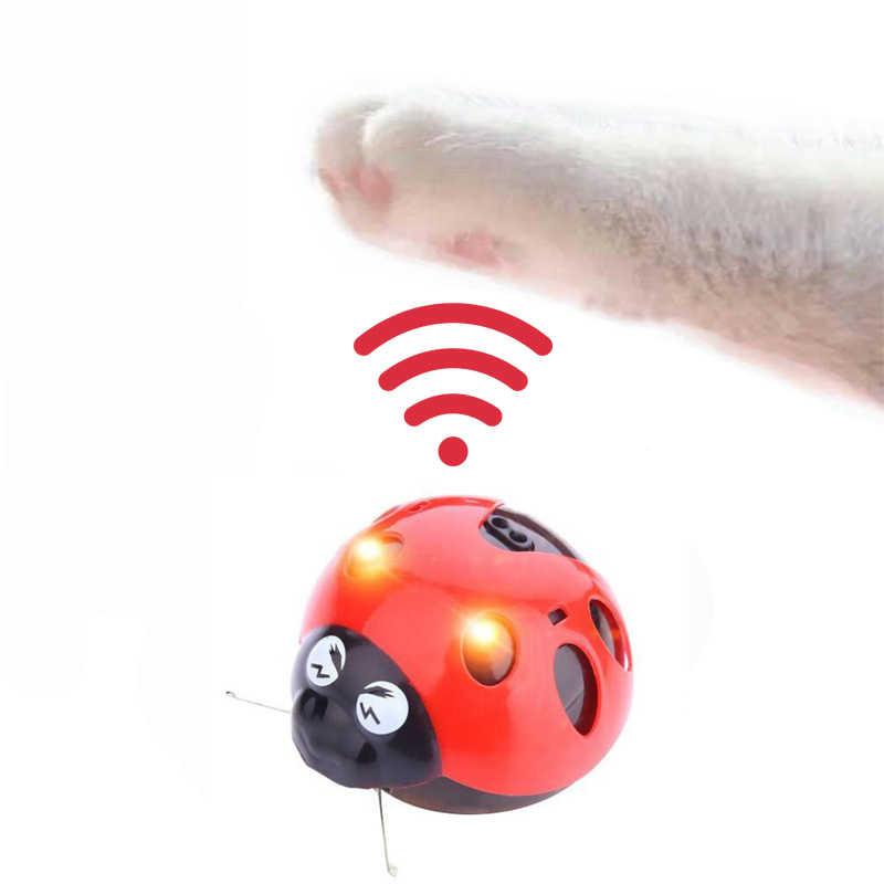 [Sklep MPK] złap mnie, jeśli możesz Super zabawa zabawka dla kota, zabawka na baterie AAA, obejrzyj nasz film, aby dowiedzieć się więcej
