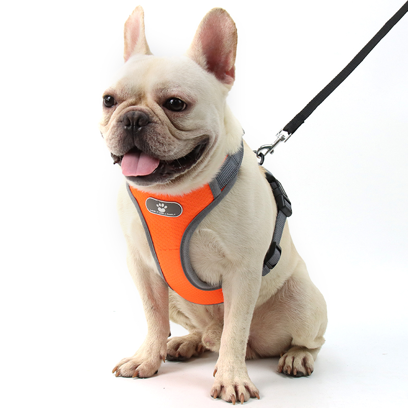Dog harness | Joli Paw | Pet supplies, Pet accessories...