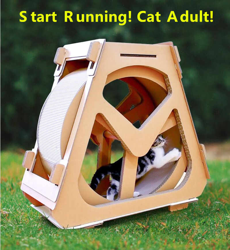 Cat wheel, cat running wheel, new pet toy, cat treadmill, animal sport equipment, cat climbing frame, cat sport toy, cat climbin
