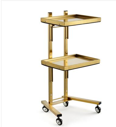 New Stainless Steel Beauty Salon Cart Hair Cutting And Folding Tool Cart Hair Salon Dedicated For Hot Dyeing