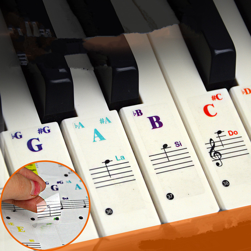 Keyboard-Stickers Piano Stave White-Keys Transparent Electronic for Symbol 61/88-Color