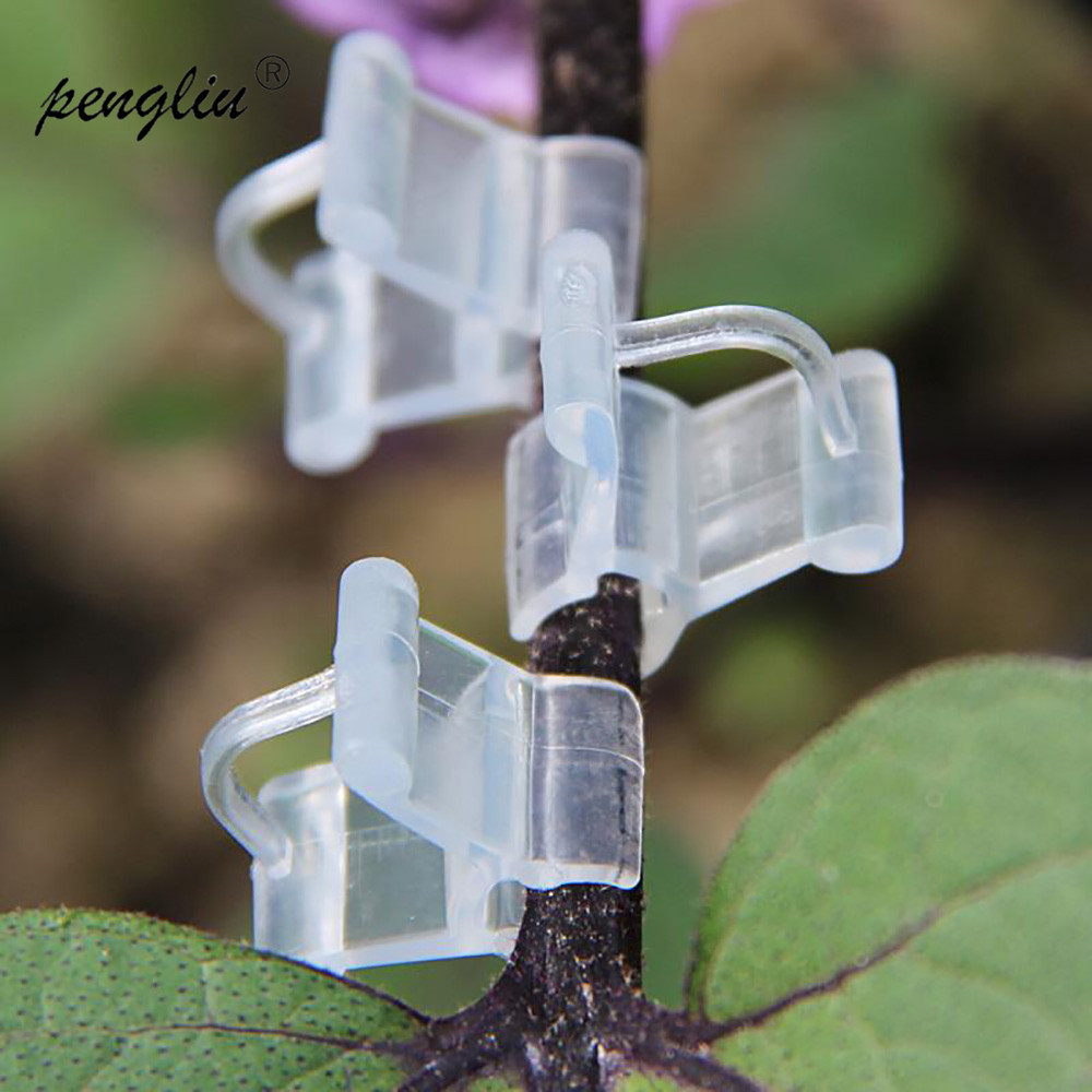 50Pcs-pack Garden Flower Plant Vine Seedlings Grafted Branches Clip Connector Fasteners Plastic Clips Garden Tool GT035