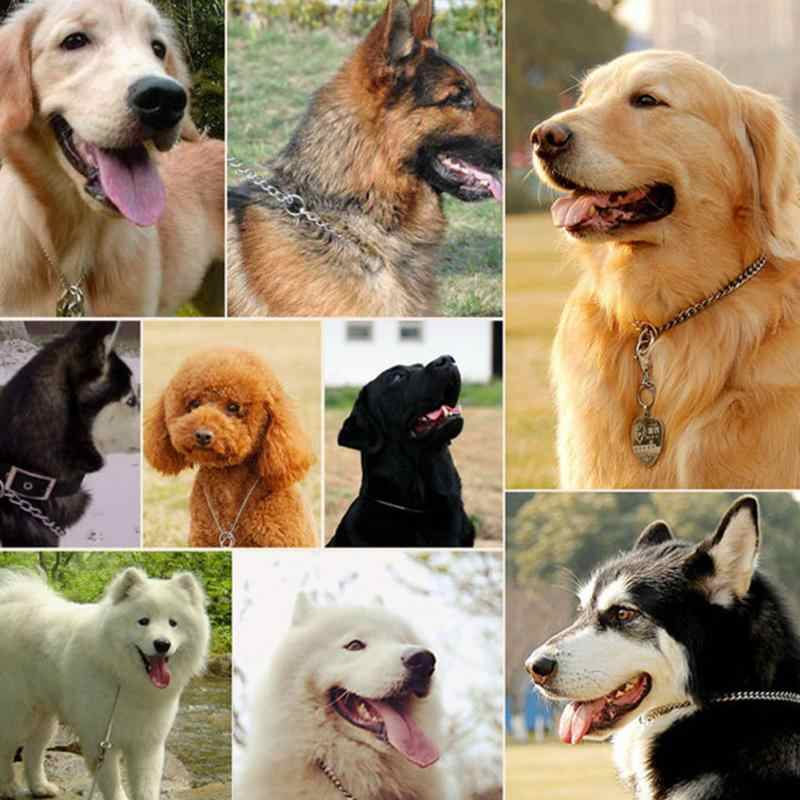 Anjing LOGAM Pelatihan Acara Kerah Adjustable Stainless Steel Kalung Kerah untuk Samll Besar untuk Hewan Peliharaan Aksesoris
