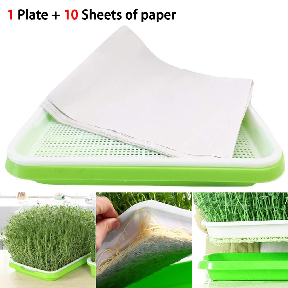 Double-layer Plastic Hydroponic Flower Basket Flower Plant Sprouting Tray Box Sprout Seedling Tray With10 Sheets Nursery Paper
