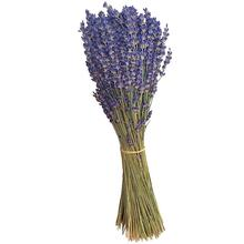 Новинка,, Натуральные сушеные цветы из Великобритании, сушеные цветы лаванды для украшения, искусственные настоящие цветы