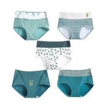 5Pcs/Lot Women Cotton Panties Underwear Sexy Abdomen Briefs High Waist Body Shaper Underpants Ladies Seamless Lingerie Drop Ship