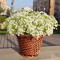 White Artificial Decorative Flowers For Wedding Plastic Home Decoration Artificial Flowers Gypsophila Bed Room DecorFlowers