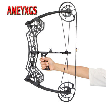1set Archery 30-60lbs Adjustable Compound Bow Steel Ball Arrows Dual-purpose Pulley Bow 310FPS For Fishing Shooting Hunting Bow 1