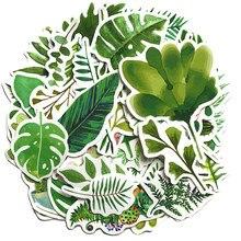 50 pçs verde sombra planta folha de samambaia adesivos para caso mala diy portátil guitarra skate brinquedo adorável decalques adesivo f5