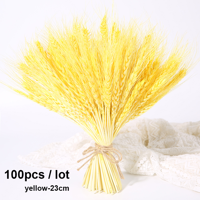 100pcs-23cm-yellow