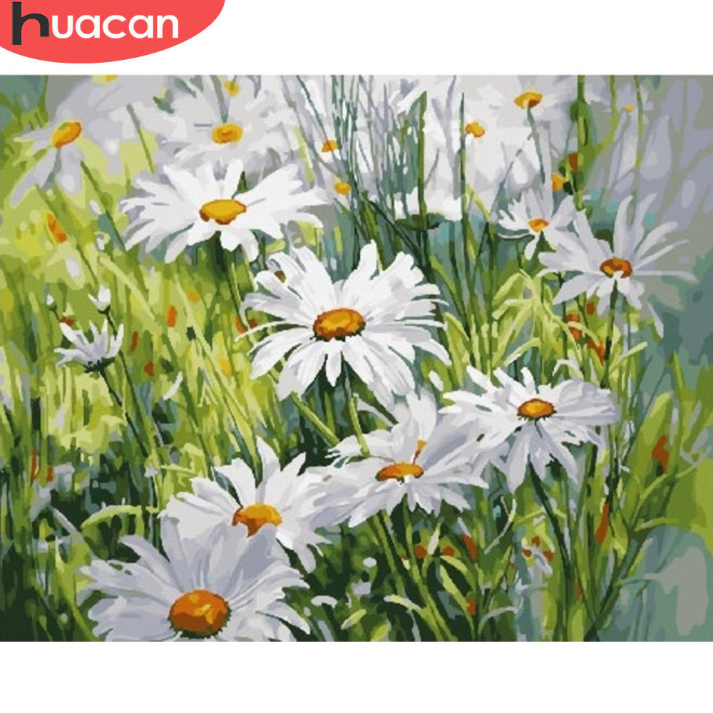 HUACAN Painting By Numbers Daisy Flower Drawing On Canvas HandPainted Art Gift DIY Coloring By Number Flower Kits Home Decor