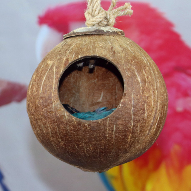 Natural Coconut Shell Bird Cages Parrot House Nesting House Cage With Hanging Lanyard For Small Pet Parakeets Finches Sparrows 5