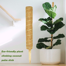 Sticks-Holder Support Vine Flower Coconut-Palm-Stick Totem Climbing Gardening 1pcs