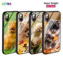 Black Cover Cute Pomeranian dog for iPhone X XR XS Max 8 7 6 6S Plus 5S 5 SE Super Bright Glossy Phone Case