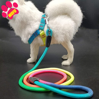 Rainbow Dog Leash & Harness - Luxury Cat Leash & Harness  1