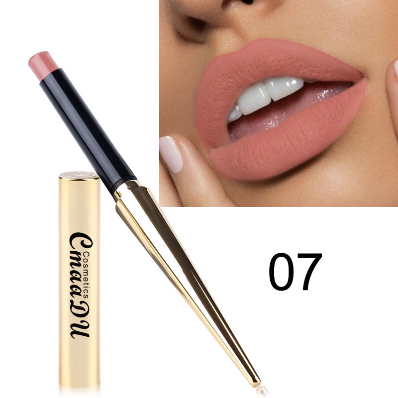 Hot Sales 12 Colors Matte Lipsticks Waterproof Long Lasting Lips Makeup Pigment Nude Sexy Red Lip Tint Matte Lipstick Cosmetic 5