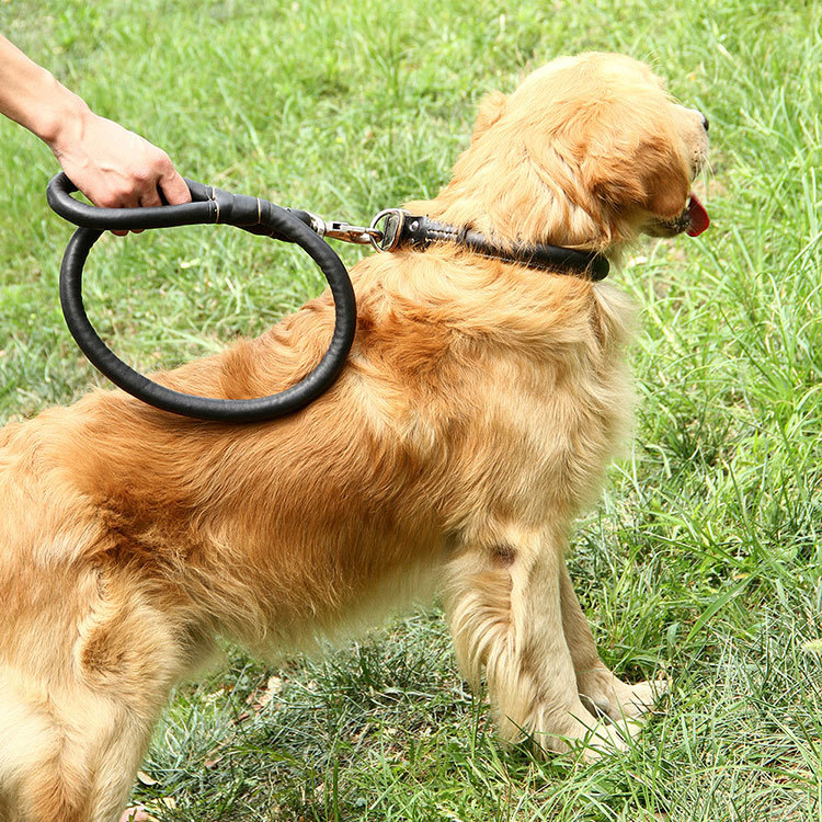 Dog Rope Dog Hand Holding Rope Neck Ring One-piece Medium Large Dog Golden Retriever Husky PU Leather 1.2 M