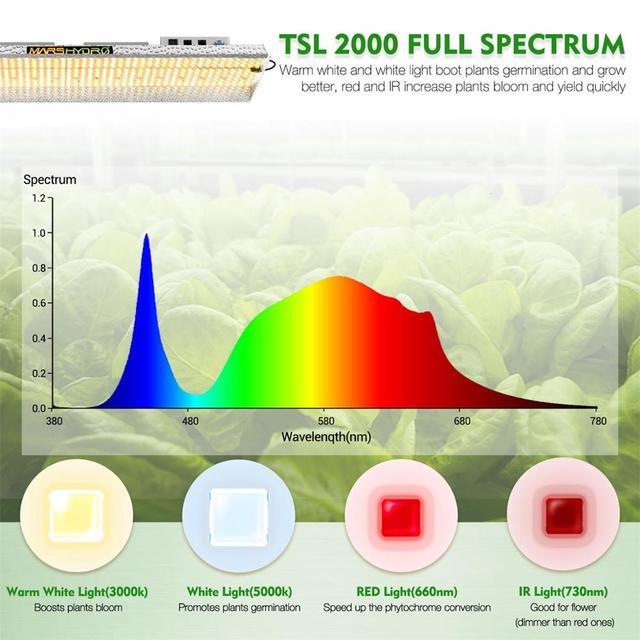 Mars Hydro TSL 2000 Led Grow Light Daisy Chain Dimmable 300W Noise Free Fan-less Full Spectrum Quantum Board  4
