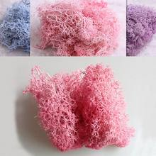 1bag Artificial Dried Reindeer Moss for Flowers Grass Basket Plant Home Garden Garland Birthday Party DIY Decoration(China)