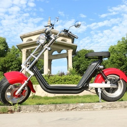 M2 Long Range 100km CE EEC Citycoco 60v 2*20ah with Extra Batteries Electric Motorcycle 12