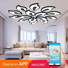 New modern led chandeliers for living room bedroom dining room acrylic iron body Interior home chandelier lamp fixtures