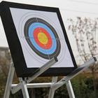 10 Pcs Arrow Target ...