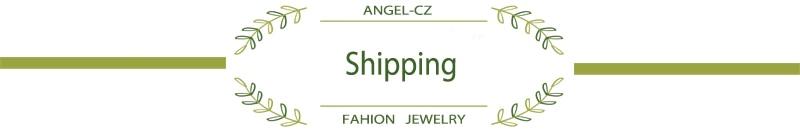 b标题栏-Shipping