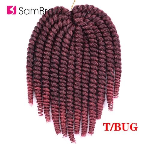 SAMBRAID 14 Inch Havana Mambo Twist Crochet Hair Crochet Braids Synthetic Hair Extension For Braids Ombre Braiding Hair Islamabad