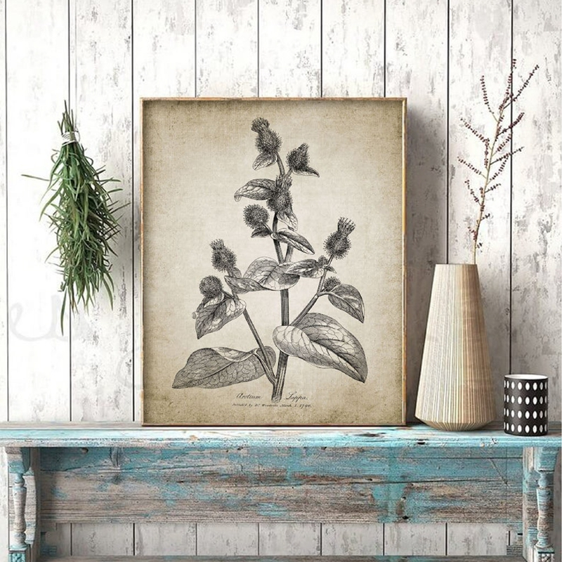 Antique Botanical Posters And Prints Rustic Farmhouse Wall Art Canvas Painting Plants Pictures For Living Room Home Wall Decor Leather Bag