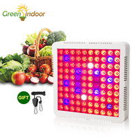 1000W Grow Tent LED Grow Light Full Spectrum Phyto Lamp For Plants Lamp For Flowers Timer Fitolampy Indoor Led Adjustable Rope