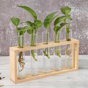 Glass Vase Table-Ornaments Planter Terrarium-Table Iron-Art Desktop Transparent Bonsai
