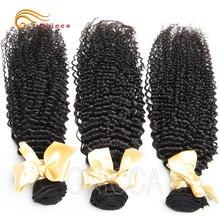 Peruvian Kinky Curly Hair Bundles 1/3/4 Bundles Deal 100% Human Hair Weave Bundles Remy Hair Extensions 8″-28″ Htonicca Hair