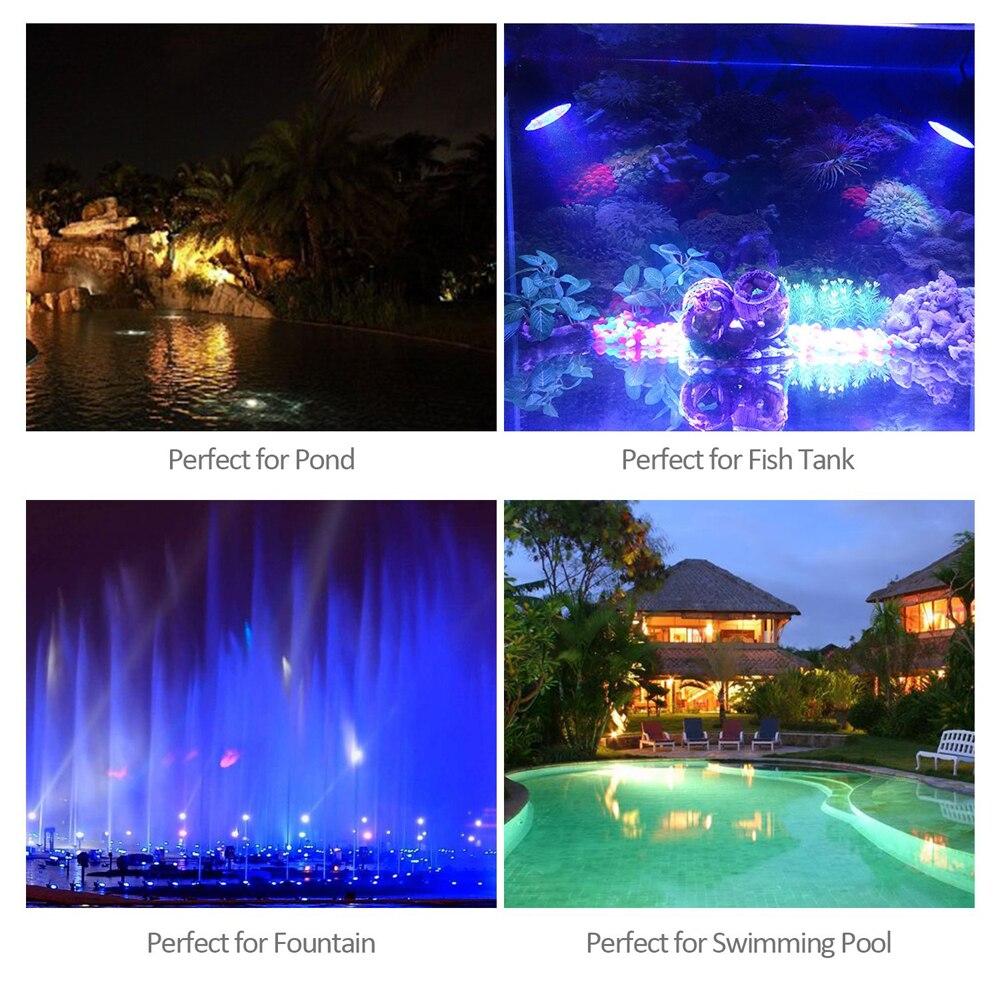 peixes, aquário, jardim, holofote