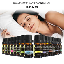 13 Flavors 10ml Pure Plant Essential Oils Set Natural Premium Aromatherapy Fragrance
