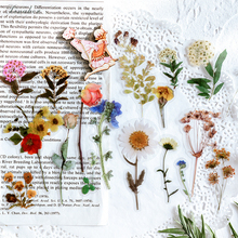 40pcs/bag Vintage Ginkgo leaves flowers PET sticker package DIY diary Bullet Journal decoration sticker album scrapbooking