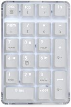 Number Pad, Mechanical USB Wired Numeric Keypad with White Backlit 21-Key Numpad for Laptop Desktop Computer PC Approved