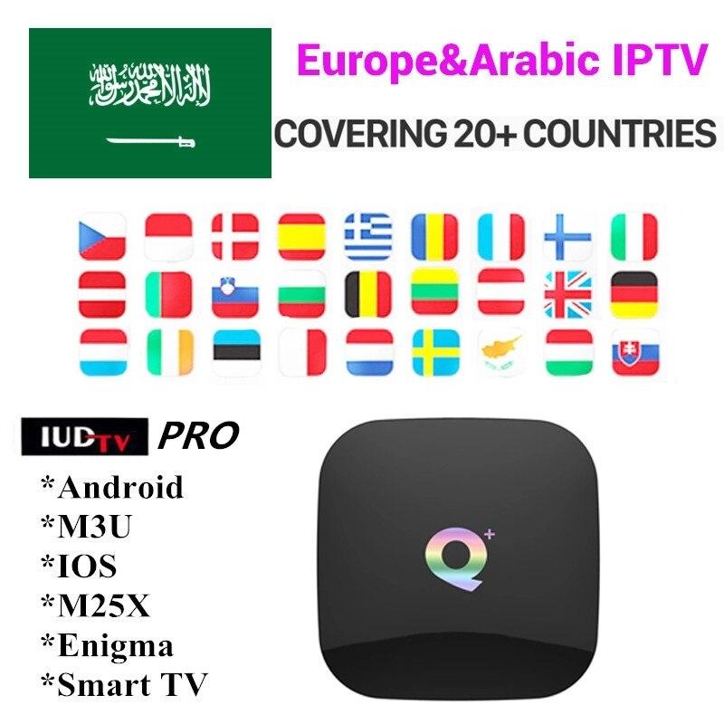 Suède IPTV BOX Q PLUS 4G 64G android TV box 8.1 + IPTV abonnement suède allemagne Europe UK espagne arabe M3U 6K smart tv box-in Décodeurs TV from Electronique    1