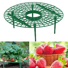 5 10 20 sztuk truskawka stojak uchwyt ramki balkon sadzenia stojak na owoce wsparcie roślin kwiat wspinaczka winorośli filar ogrodnictwo stojak tanie tanio