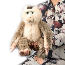 цена на Northern Tail Monkey Plush Doll Toy Cute Little Monkey Stuffed Animals Soft Doll Plush Toy High Quality Birthday Gift For Kids