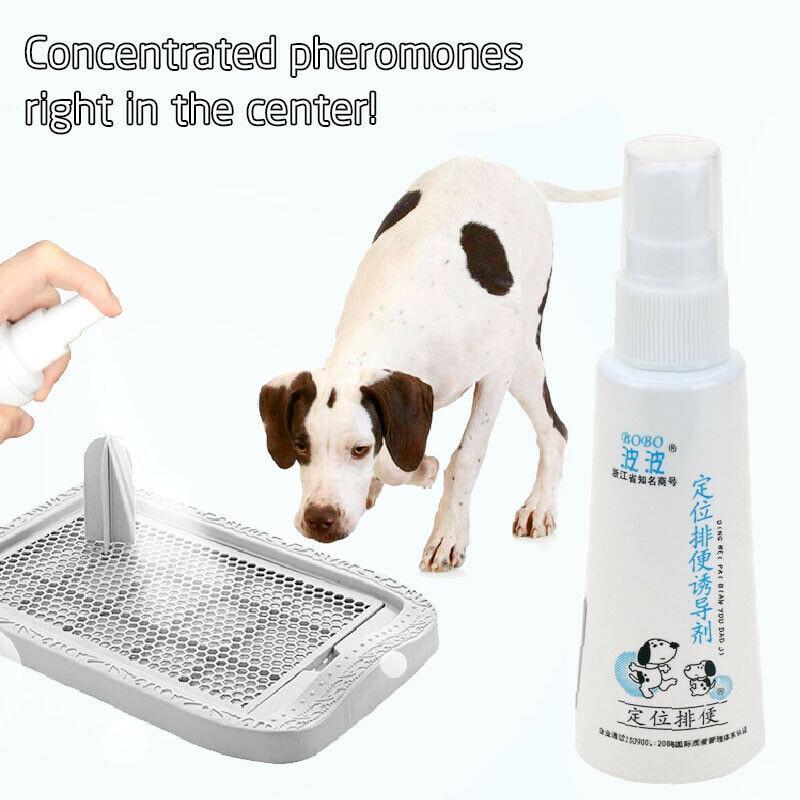 font b pet b font perfume deodorant toilet agent training defecation dog liquid positioning lure