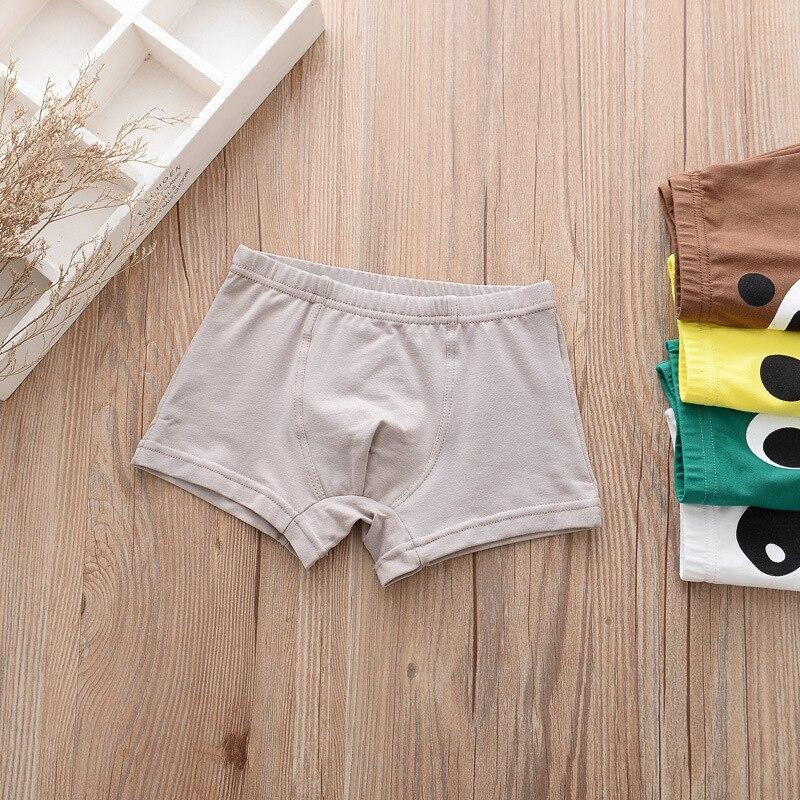 5pcs/lot Kids Boys Underwear Cartoon Children's Shorts Panties for Baby Boy Boxers Panty Teenager Underpants 2-14T BU013 5
