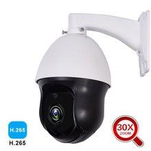 1080P kamera PTZ IP zewnętrzna kamera Onvif 30X ZOOM wodoodporna Mini kamera kopułkowa 2MP H.265 IR 60M P2P kamera do monitoringu CCTV xmeye app