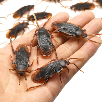 10pcs/lot Special Lifelike Model Simulation Fake Rubber Cock Cockroach Roach Bug Roaches Toy Prank Funny Trick Joke Toys image