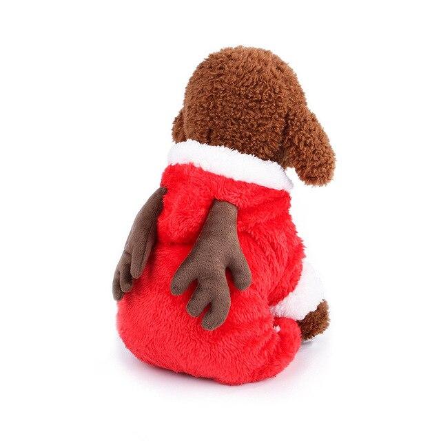 Фото производители продают одежду для собак тедди домашних животных