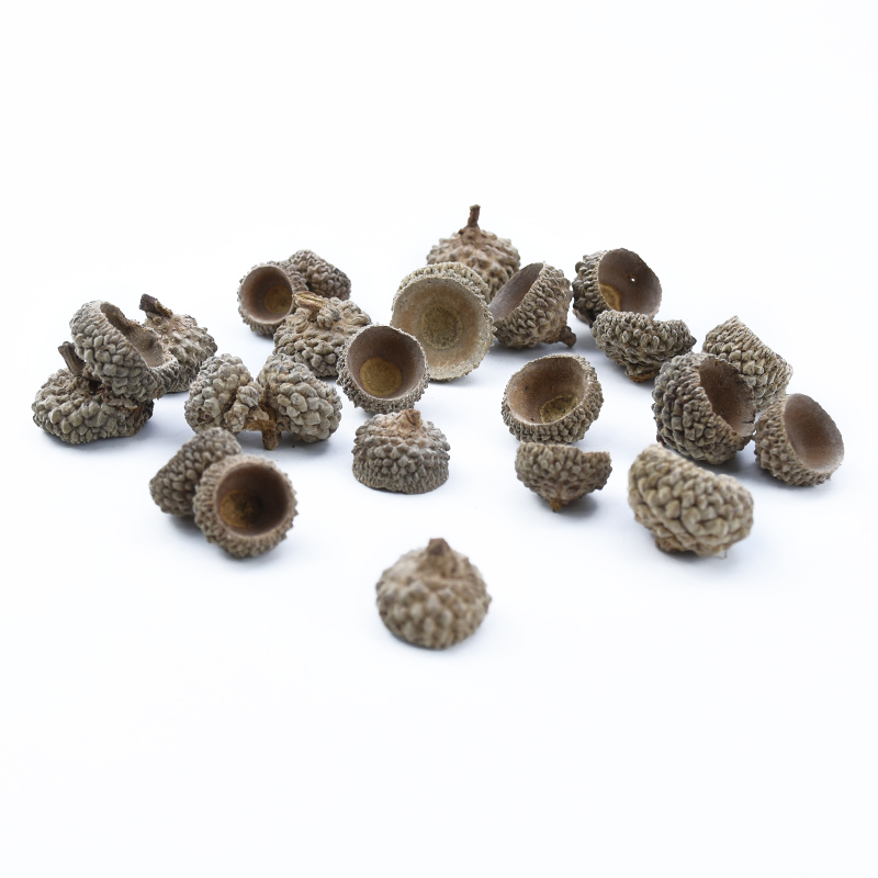 20pcs Natural Dried flowers Pine cone Acorn wholesale Artificial Flower For Home Christmas DIY Garland Wreath wedding Decoration 2